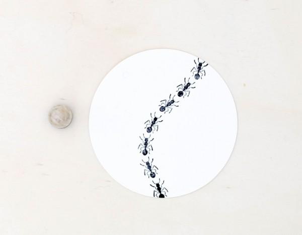 Perlenfischer Stempel Ameise