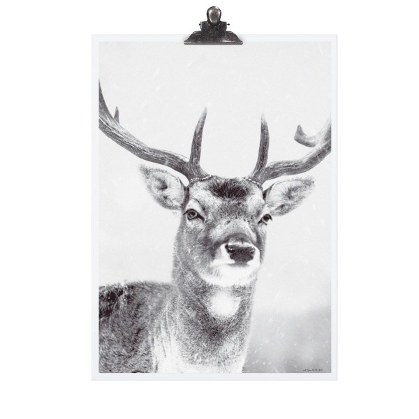 "Tafelgut Poster ""Deer"""