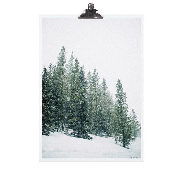 """Tafelgut Poster """"Forest"""""""