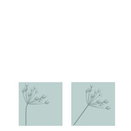 Streichholzschachtel Kvist, Grau