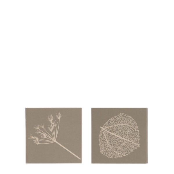 Streichholzschachtel Kvist, Grün