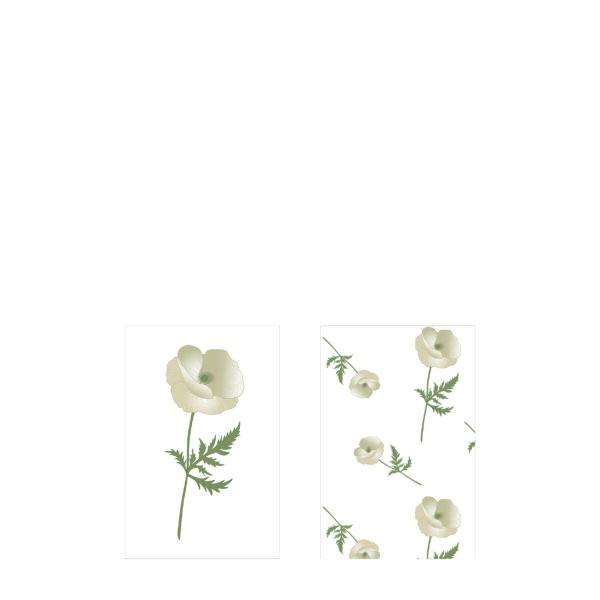 Streichholzschachtel Vallmo (Anemone)